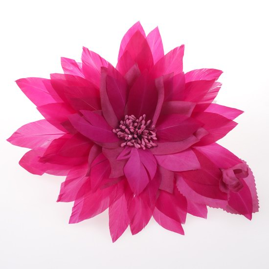Grosse Fleur fushia